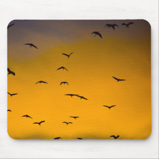Birds in the Sky - Mouse Pad