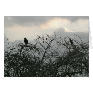 Birds in the Storm Card