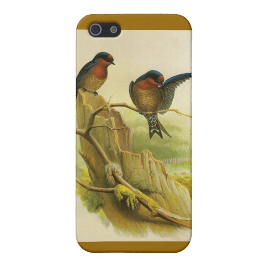 Birds iPhone 5/5S Cover