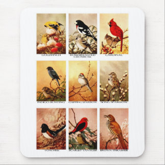 Birds Mouse Pad