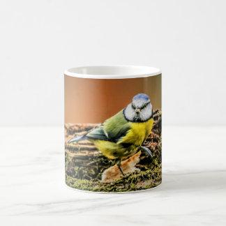 Birds Mug - Blue Tit