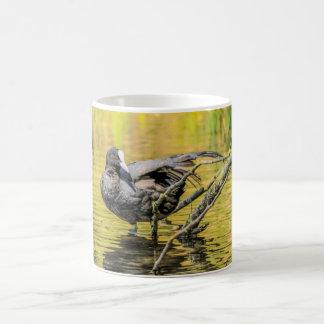 Birds Mug - Coot