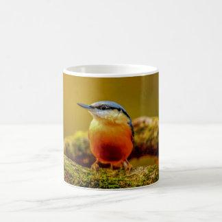 Birds Mug - Nuthatch