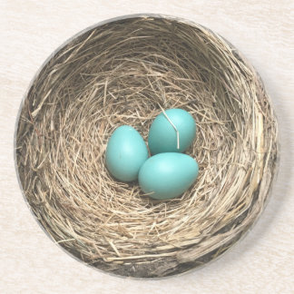Birds Nest with Blue Eggs Beverage Coaster