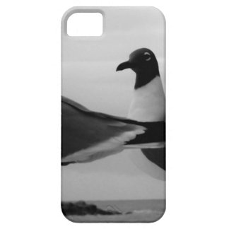 Birds of a Feather Case For The iPhone 5