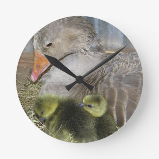 Birds Of A Feather Clock