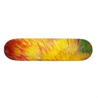 Birds of a Feather Skateboard
