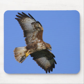 Birds of Prey Mousemats Mouse Pad
