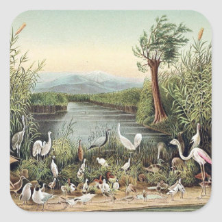 Birds of the Caucasus Square Sticker