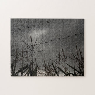 Birds on a Line Jigsaw Puzzle