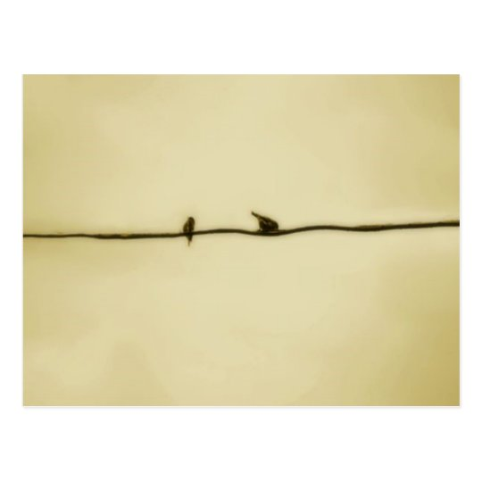 Birds on A Wire in Autumn Postcard