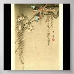 Birds on Cherry Tree by Seitei Watanabe 1851- 1918 Poster