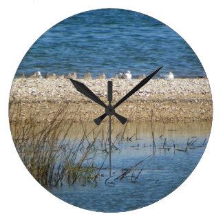 Birds on the Matanzas Wall Clock