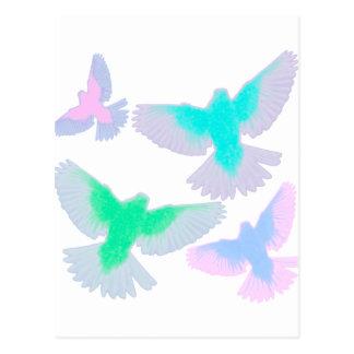 Birds Pastel Postcard