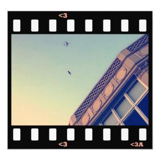 birds- pelican+plane photo art