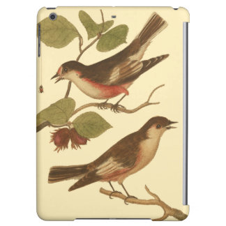 Birds Perched on Branches Eating Insects iPad Air Cases