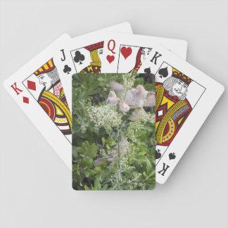 Birds & Plants Poker Deck