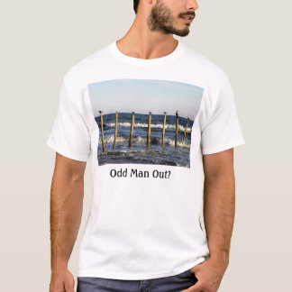 Birds Post Men's Shirt