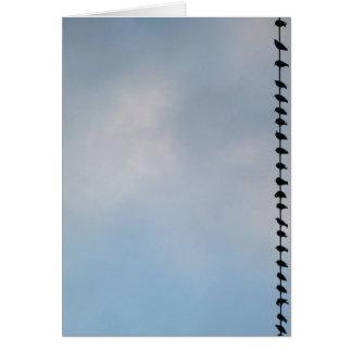 Birds, San Francisco Card