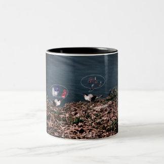 Bird's singing on a two tone mug