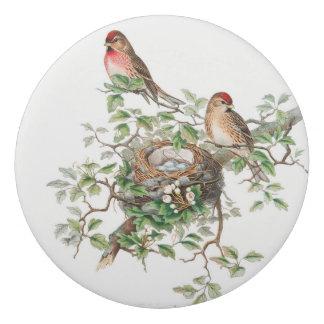 Birds sitting on a branch eraser