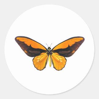 BirdWingY Butterfly Round Sticker