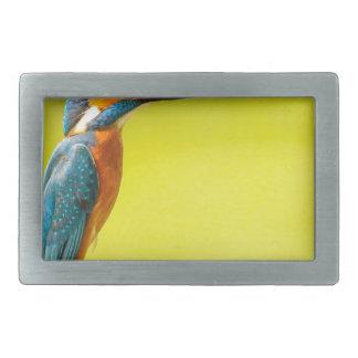 birdy bird boo valantines day belt buckles
