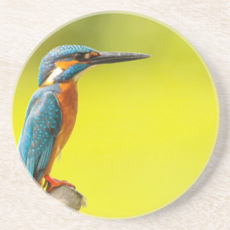 birdy bird boo valantines day drink coaster