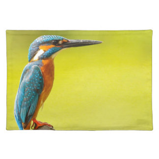 birdy bird boo valantines day place mats