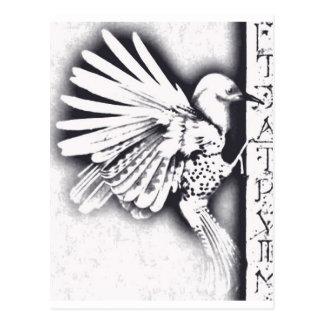 Birdy Postcard