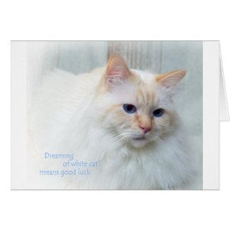 Birman Cat Card