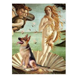 Birth of Venus - German Shepherd 1 Postcard