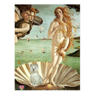 Birth of Venus - Westie (S) Postcard