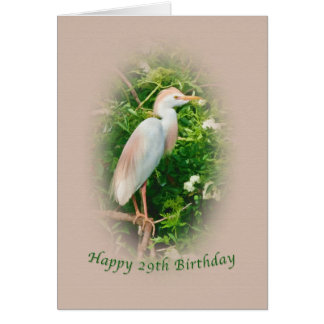 Birthday,  29th, Cattle Egret Bird Perched in Tree Card