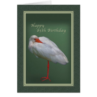 Birthday, 85th, White Ibis Bird Card