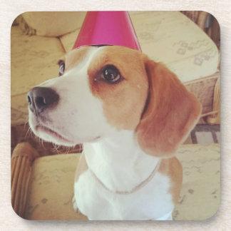 Birthday Beagle coasters
