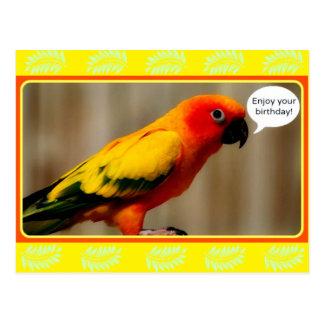 Birthday Birdie Postcard