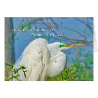 Birthday, Boss, From All of Us, Great Egret Bird Greeting Card