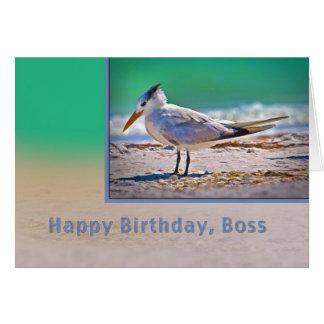 Birthday, Boss, Royal Tern Bird Greeting Card