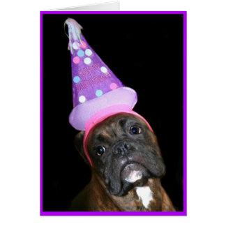 Birthday Boxer Notecard Note Card