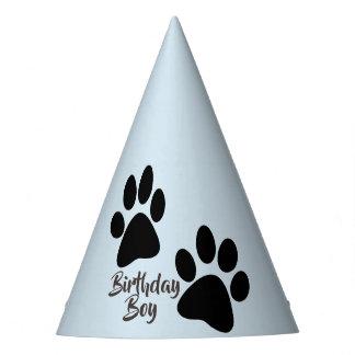 Birthday boy party hat