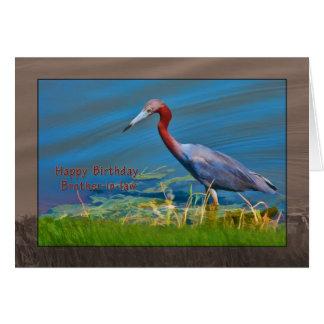Birthday, Brother-in-law,  Little Blue Heron Bird Card