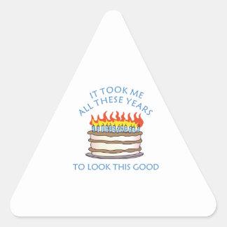 Birthday Cake Triangle Stickers