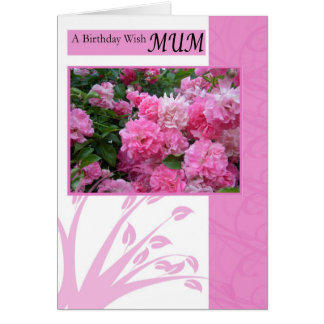 Birthday Card for mum, wild pink roses