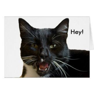 Birthday Card: Or Else Cat Card