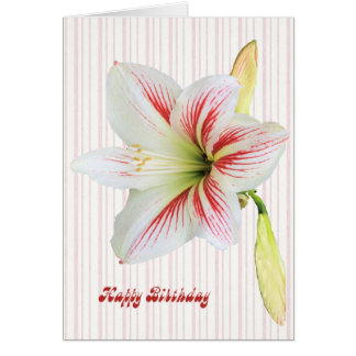 Birthday Card with a Beautiful Lily