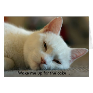 Birthday Card with Cat: Wake me up for the cake!