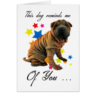 birthday card with cute shar pei - humorous card