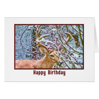 Birthday Card with Deer and Crab Apples