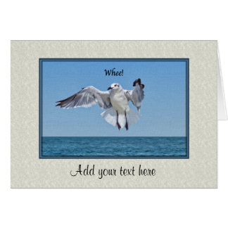 Birthday Card with Laughing Gull Bird